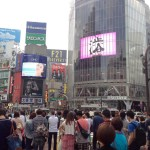 日本に一時帰国して買って帰ったもの