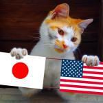 アメリカに来て2年経っての雑感。日本との違いなど。