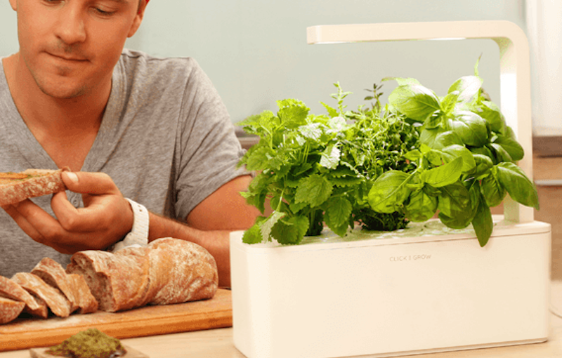屋内の家庭菜園IoT「スマートガーデン」5種、私が買ったスマートガーデンは思ってたほどスマートじゃなかった…